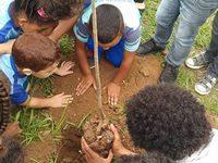 Sec de Meio Ambiente realiza Projeto Escola Verde em Alberto Torres