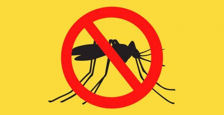 Prefeitura de Areal divulga cronograma de vacinação contra febre amarela